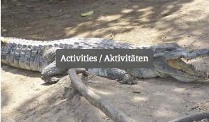 Activities / Aktivitäten
